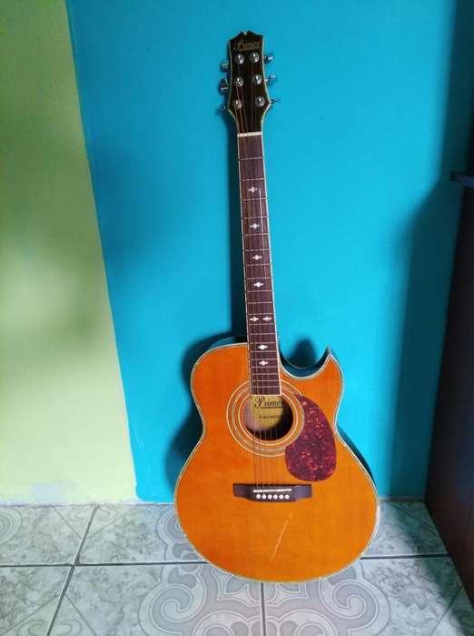 Vendo Guitarra Electroacústica Primer