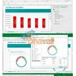 Video Curso Aprende graficos y presentaciones con Excel 2010 Referencia SKU: 949