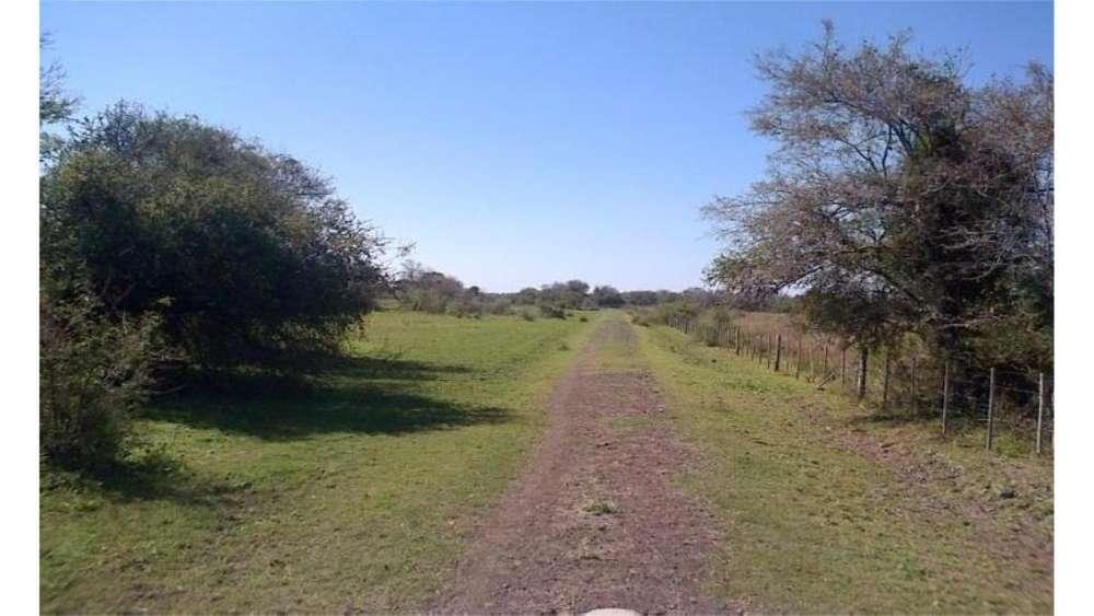 Zona Parque Provincial Chaco - Venta Y/o Permuta 100 - UD 1.600 - <strong>campo</strong> en Venta