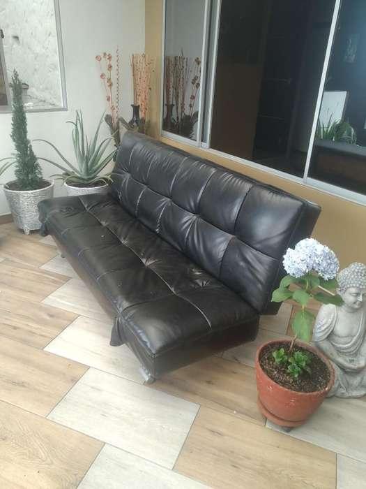 Se Vende Sofa Xama