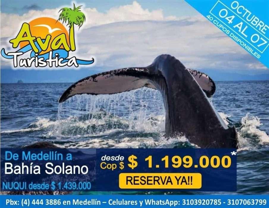 Excursiones a Bahia solano 03 noches 04 días desde 1'199.000