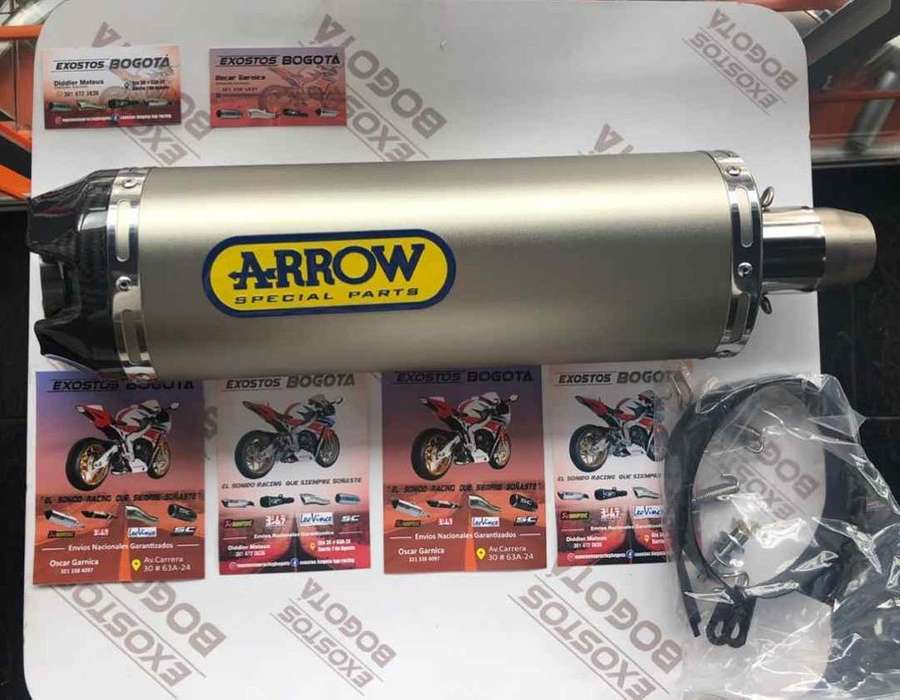 Arrow Punta Carbon - Arrow Thunder-Store