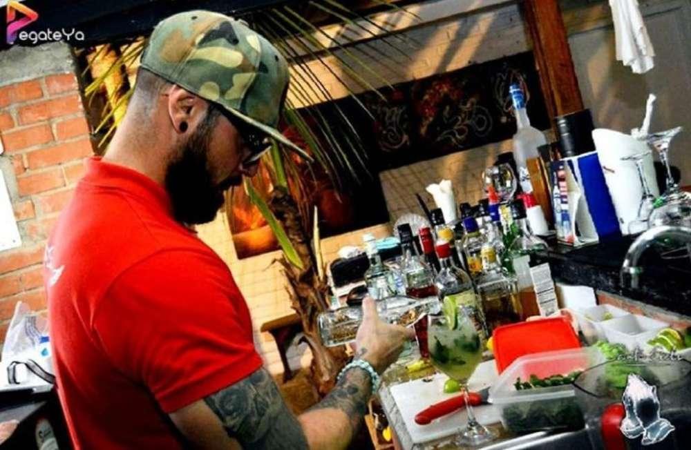 Bartender Mixólogo Disponible