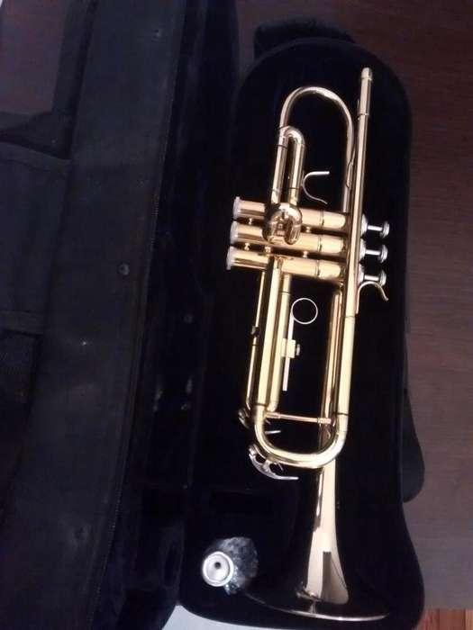 Trompeta Parquer Custom con accesorios