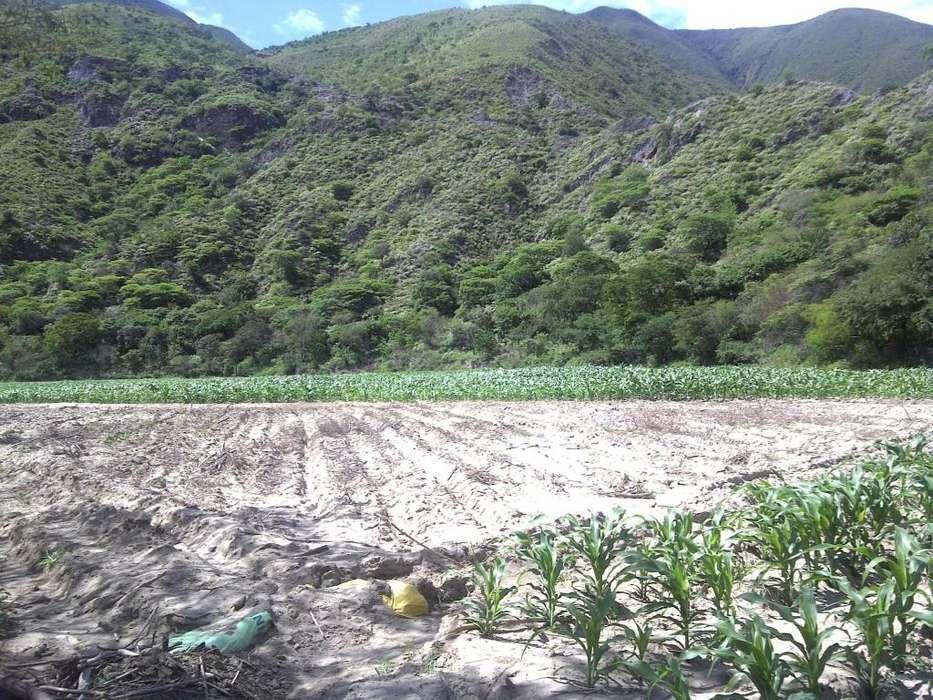Sector Illaca, San Pedro de la Bendita, Catamayo, Loja, Ecuador