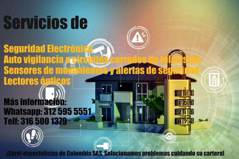 Servicio Seguridad Electrónica