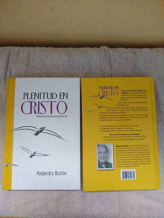 Plenitud en Cristo, por Alejandro Bullón