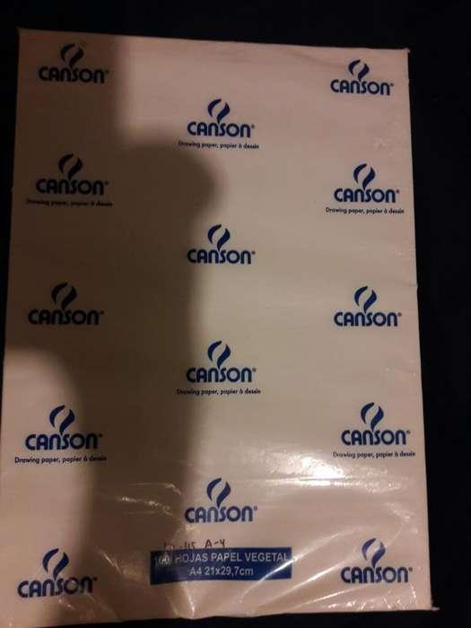 Papel Canson X 100 Un.