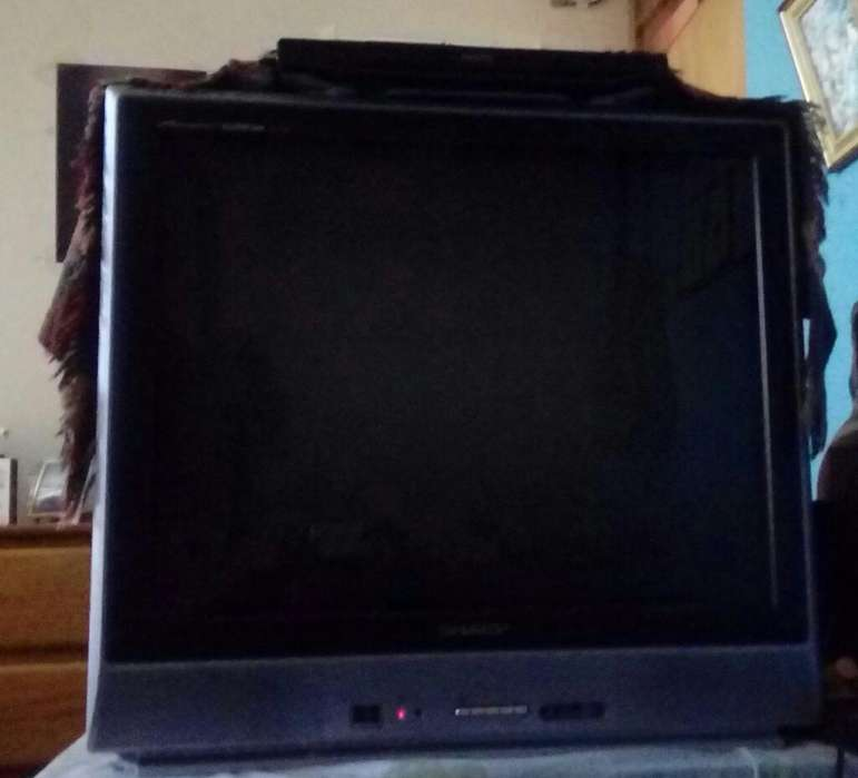 Vendo Televisor de 29 Sharp