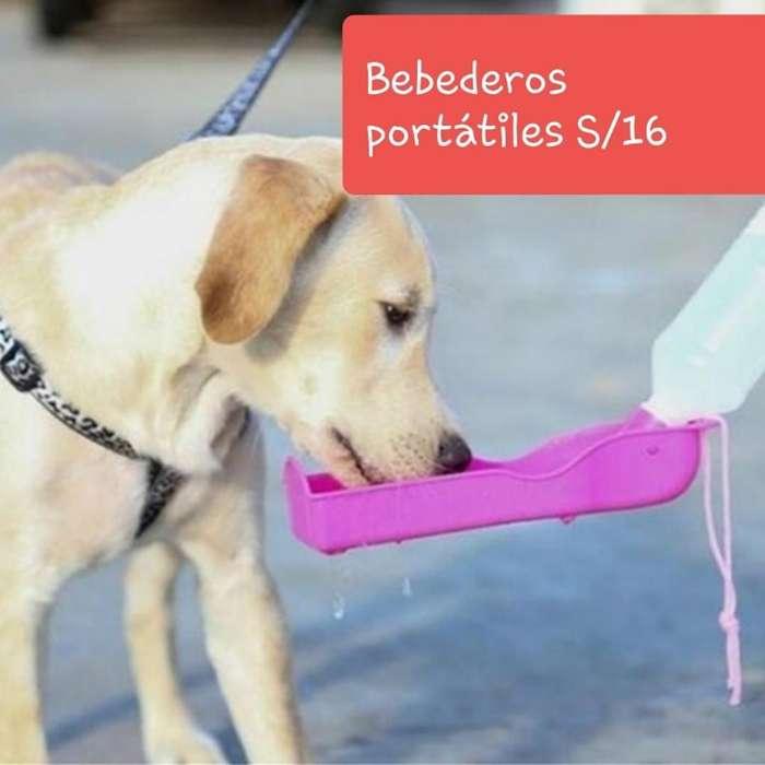 Bebederos para Perros