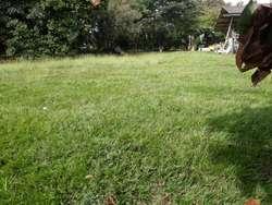 VENTA DE LOTE PALMIRA ID 229