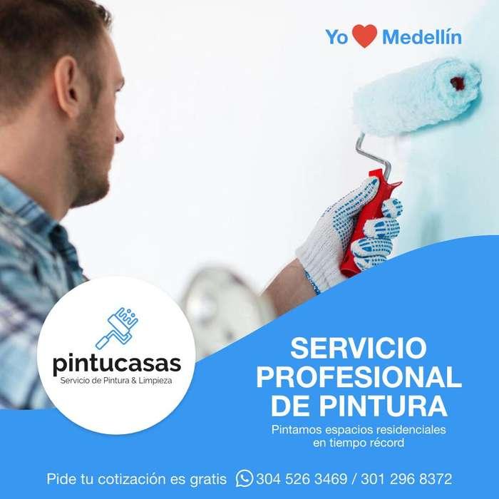 Servicio Profesional de Pintura