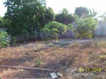 Vendo una hectaria de terreno en Quevedo Sector Casa Guare