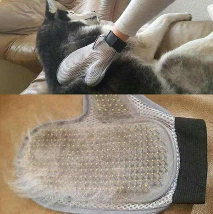 Cepillo Saca Pelo de Mascota Perro Gato