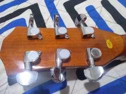 Guitarra Persian Electroacustica