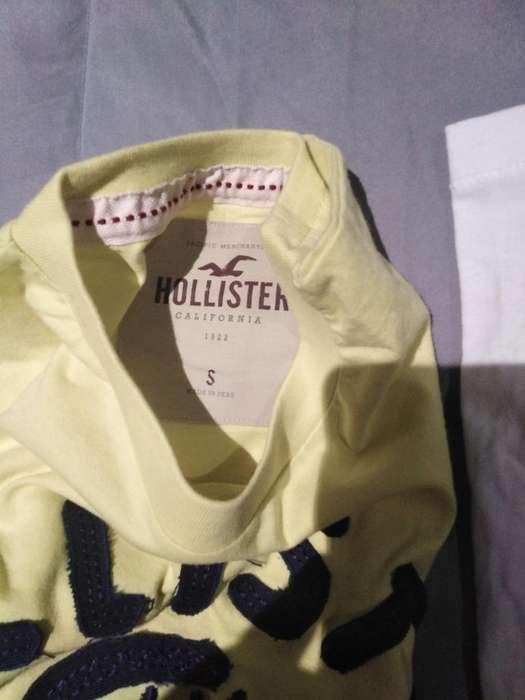 Polos Hollister Talla S