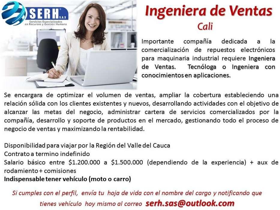 INGENIERA DE VENTAS