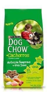 DOG CHOW CACHORRO X 21KG