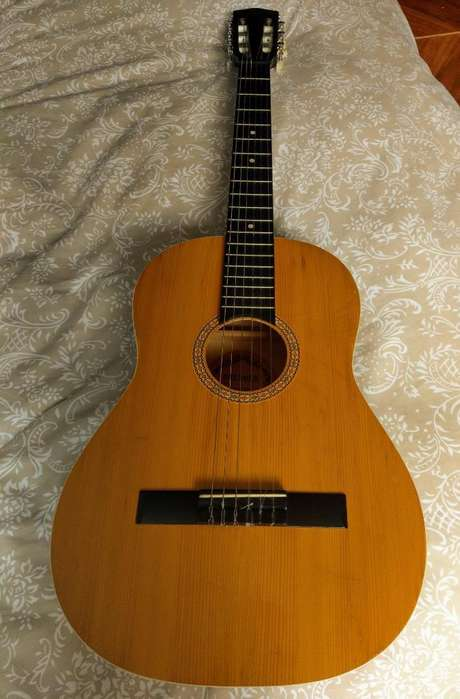 Guitarra Premier, Rf289 echa en Romania