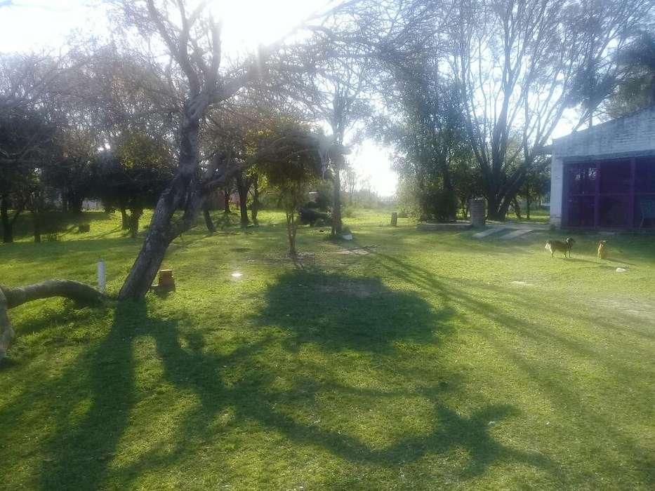 Casa Quinta 4800metros Cuadrados