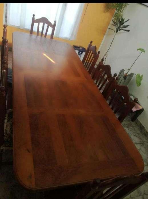 Mesa de Algarrobo 3mt Más 12 Sillas