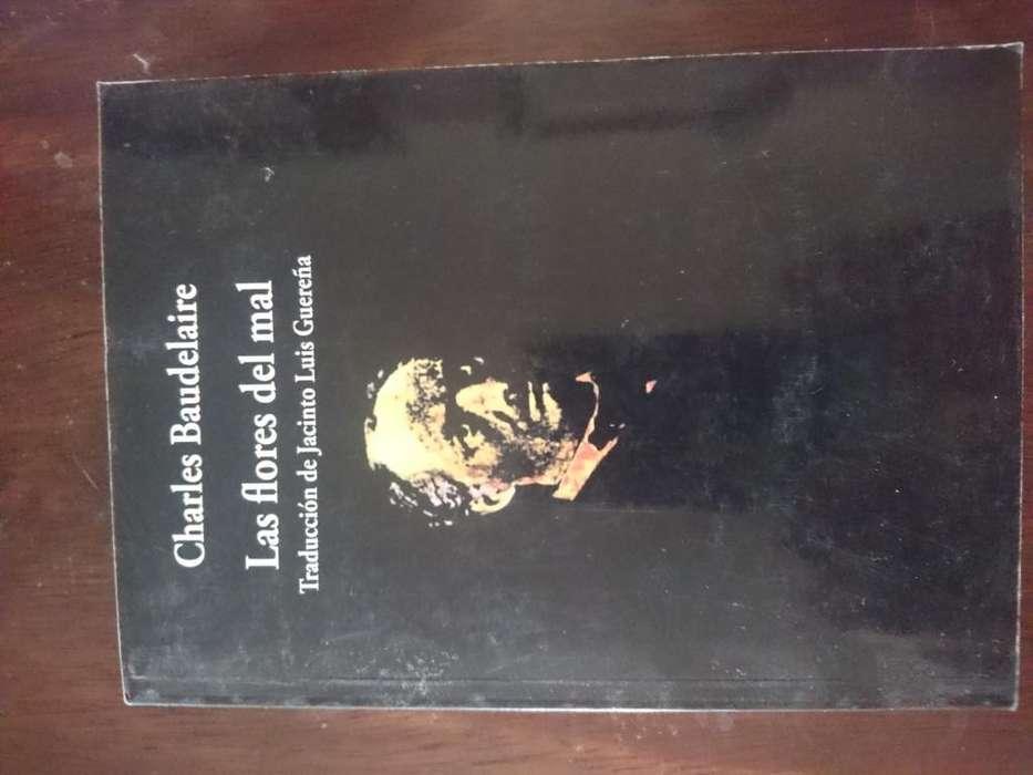 Libro de Poesia