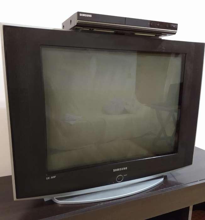 Vendo Televisor con Dvd