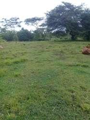 Se vende finca de 6,5 hectáreas