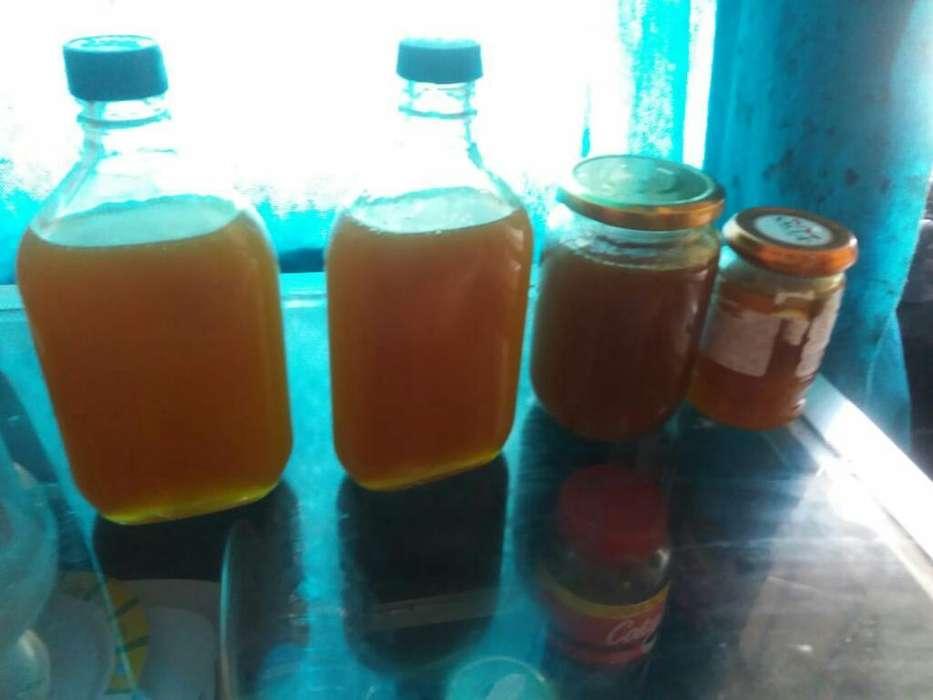 Vendo Miel de Aveja Pura