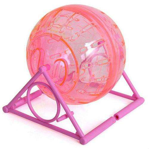 Rueda hamster ejercicio esfera pelota juego
