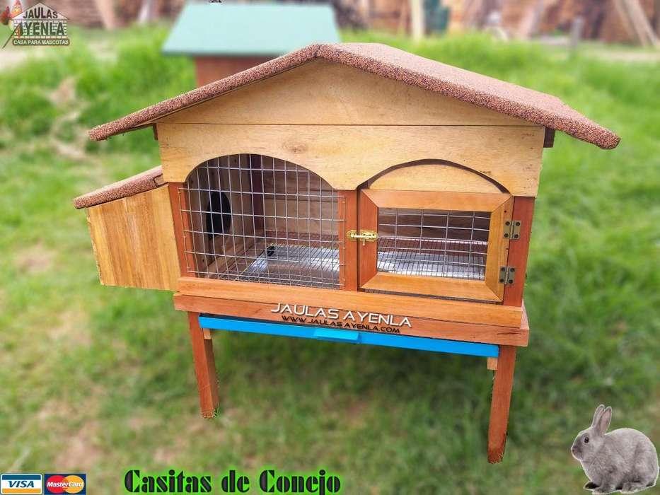 Nuevo Diseño Casita de Conejo Cuy con Madriguera