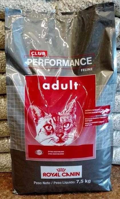 Royal Canin Club Performance Feline 7.5 kg