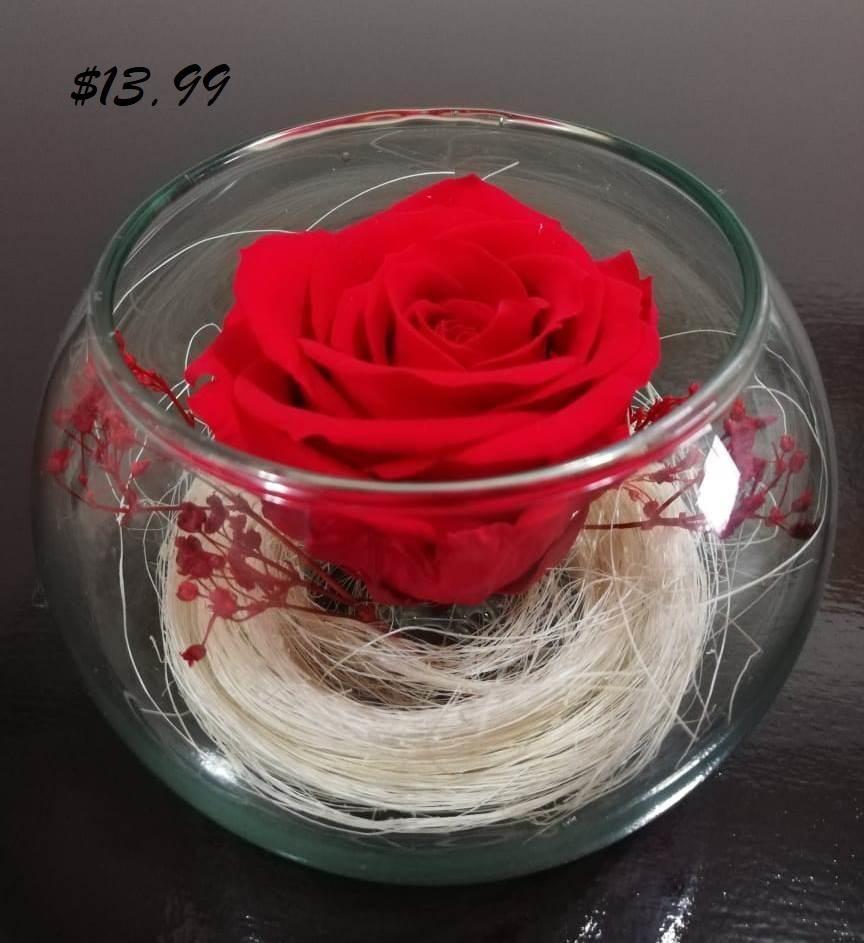 Hermosas Rosas Eternas O Preservadas En Peceras En Venta Quito