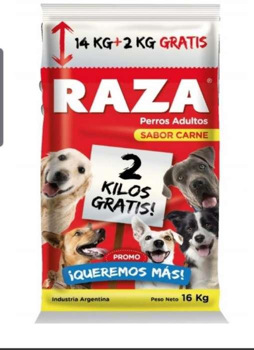 Alimento Perro Raza 15 Kg