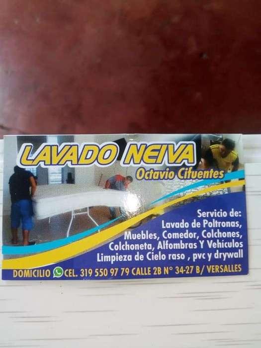 Lavados Neiva. Servicio Whatsa3195509779