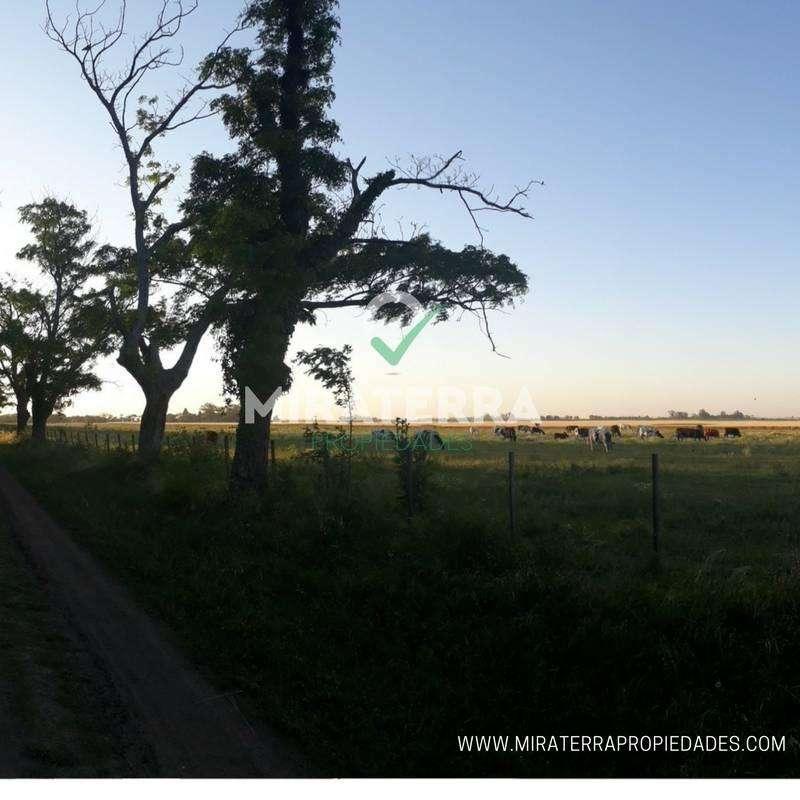Venta lote de terreno en Funes
