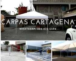 Piscinazo Alquiler de Piscina 301 475 6198 Carpas