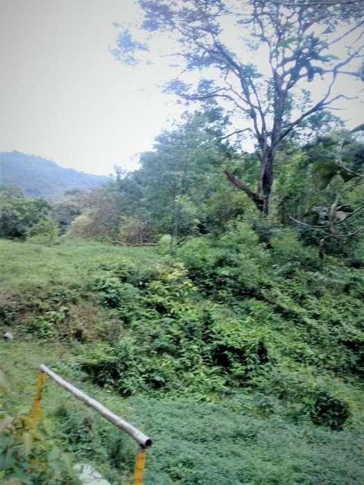 Cod. VBHHI196 Finca En Venta En Villavicencio Buena Vista