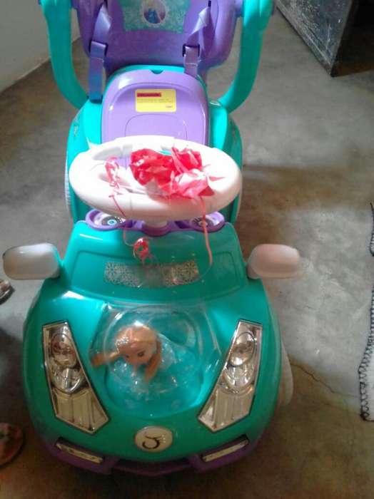 Carro Frozer