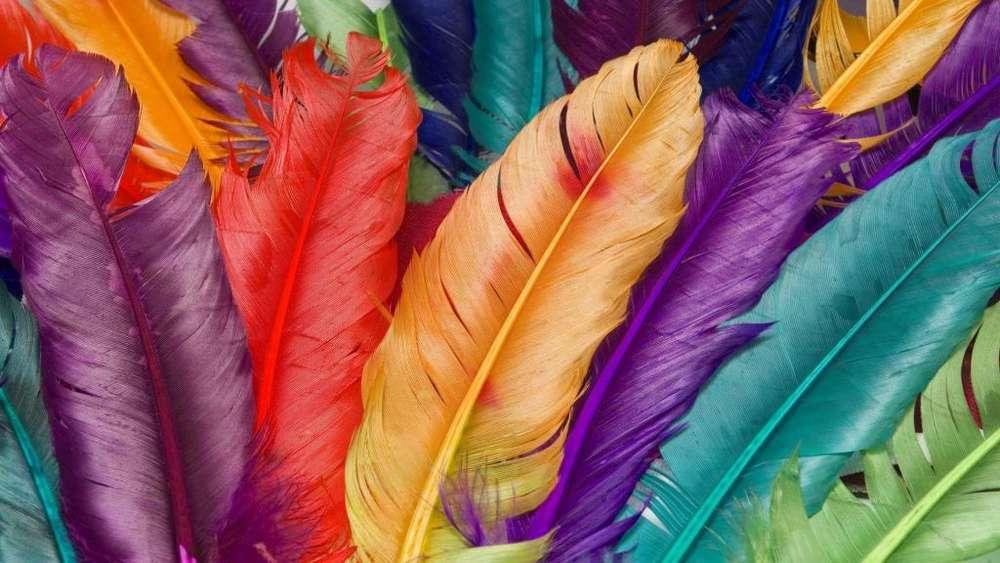Hermoso cuadro colorido en Lienzo.