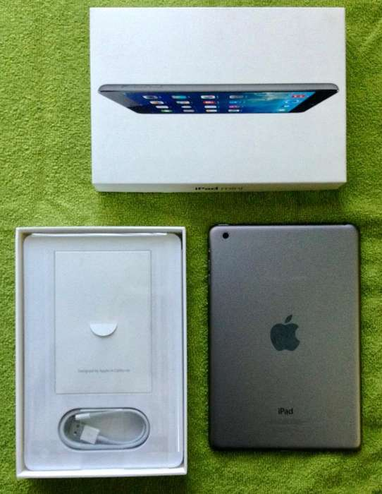 iPad Mini 2 16 Gb Excelente