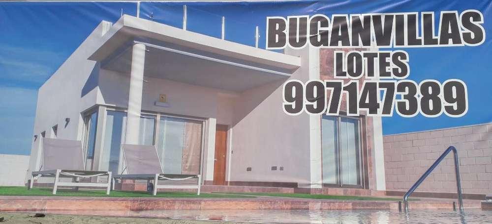 Cieneguilla, Buganvillas Ii