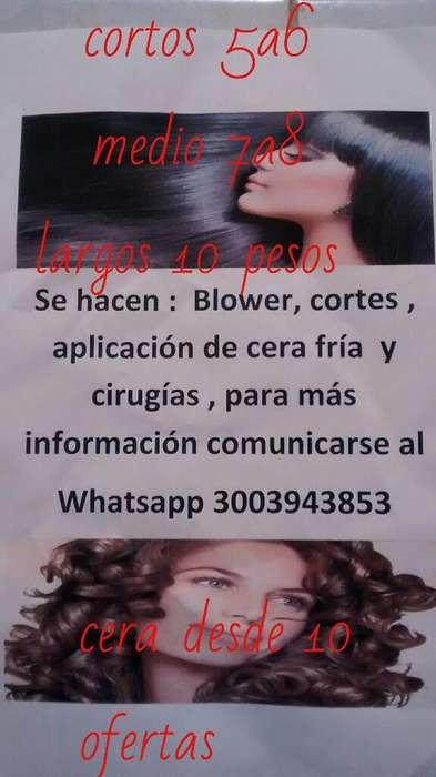 Ofertas de Corte Y Blower Corto Y Largos