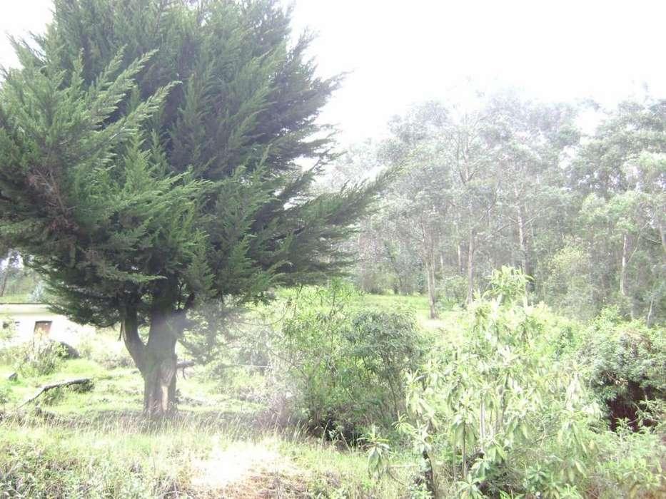 Terreno en Venta en Sangolqui/ Cerca al Colibri y al nuevo Aeropuerto de Tababela