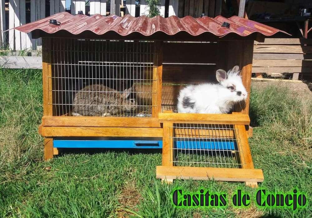 CASITA DE CONEJO REX,CABEZA DE LEON ,CUY,
