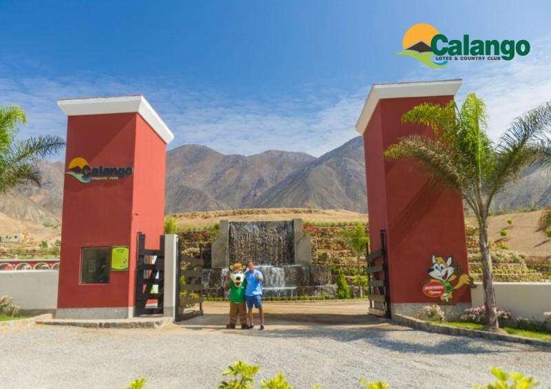 Remato por viaje membresia Calango