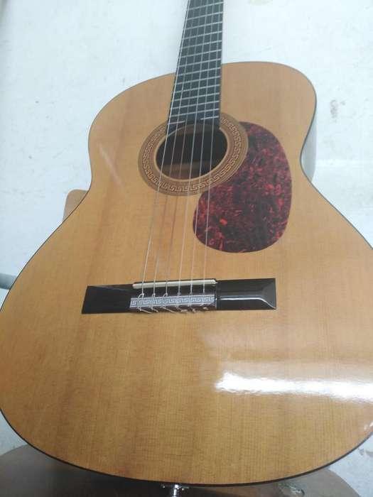 Guitarra espaola muy sonora con micrfono incluido