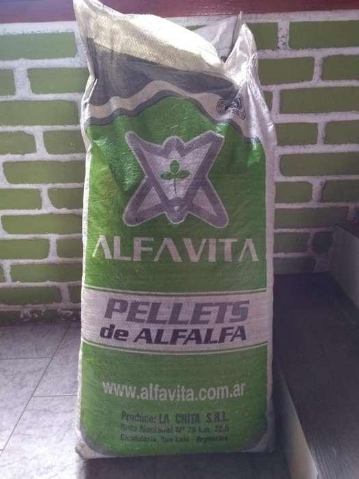 Pellets De Alfalfa Alfavita 40 Kg