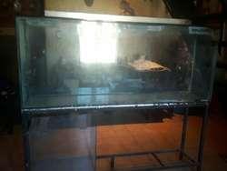 Vendo Pecera con Tapa, en Vidrio 10 Mm