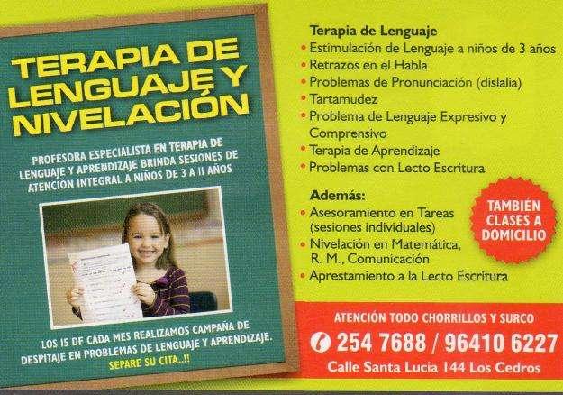 TERAPIA DE LENGUAJE PARA NIÑOS Y ADOLESCENTES, CHORRILLOS